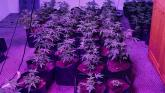 Police seize drugs worth £50,000 in County Derry