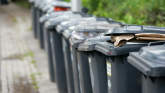 Derry City and Strabane District Council asks for people's help in coping with the increased pressure on its bin collections