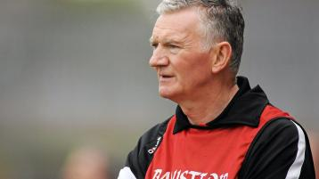 Twinning with hurling strongholds would help Ulster hurling, says Magill