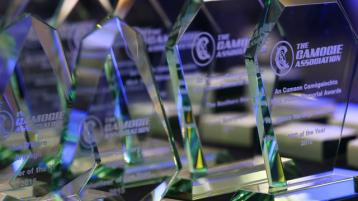 Camogie awards to be streamed live on Saturday night