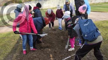 Gallery: Tree Planting in St Columb's Park Walled Garden
