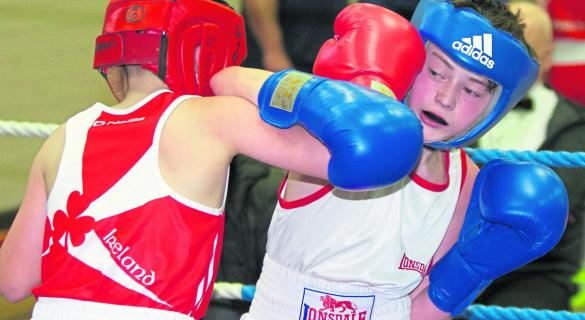 Nine county boxing championships to continue this weekend