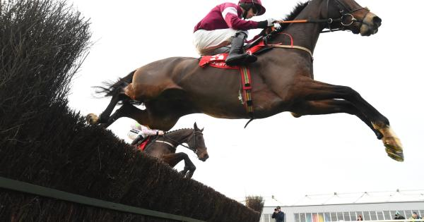 AINTREE GRAND NATIONAL TIPS - Three horses to back in the Grand National